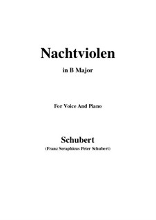Nachtviolen (Dame's Violets), D.752: B Major by Франц Шуберт