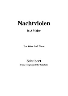 Nachtviolen (Dame's Violets), D.752: Ля мажор by Франц Шуберт