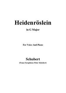 Дикая роза, D.257 Op.3 No.3: Для голоса и фортепиано (G Major) by Франц Шуберт