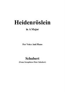 Дикая роза, D.257 Op.3 No.3: Для голоса и фортепиано (A Major) by Франц Шуберт