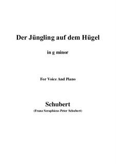 Der Jüngling auf dem Hügel (The Youth on the Hill), D.702 Op.8 No.1: Для голоса и фортепиано (G minor) by Франц Шуберт