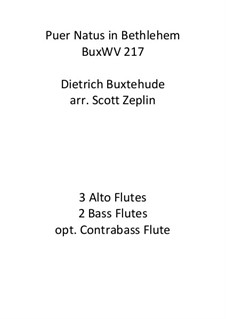Puer natus in Bethlehem, BuxWV 217: For flute quintet by Дитрих Букстехуде