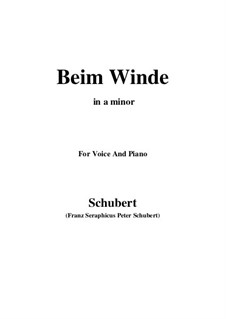 Beim Winde (When the Wind Blows), D.669: A minor by Франц Шуберт