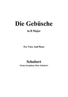 Die Gebüsche (The Bushes), D.646: B Major by Франц Шуберт