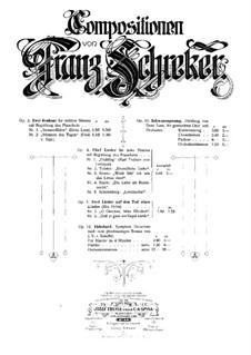 Zwei Lieder auf den Tod eines Kindes, Op.5: Zwei Lieder auf den Tod eines Kindes by Франц Шрекер