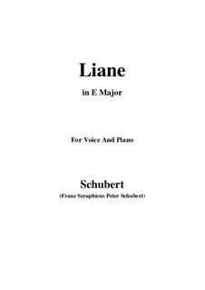 Liane, D.298: E Major by Франц Шуберт