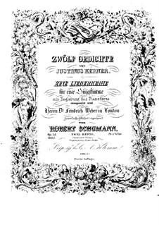 Двенадцать стихотворений для голоса и фортепиано, Op.35: Сборник by Роберт Шуман