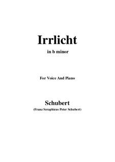 No.9 Блуждающий огонёк: For voice and piano (b minor) by Франц Шуберт