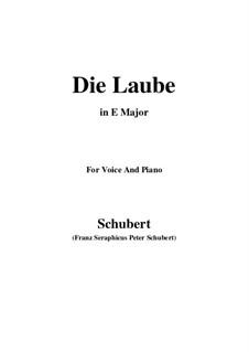 Die Laube (The Arbour), D.214 Op.172 No.2: E Major by Франц Шуберт