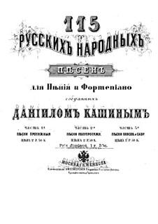 Русские народные песни для голоса и фортепиано: Книга II by Daniil Nikitich Kashin