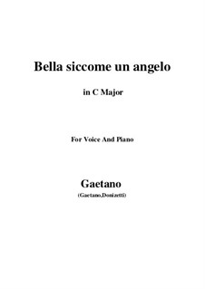 Дон Паскуале: Bella siccome un angelo (C Major) by Гаэтано Доницетти