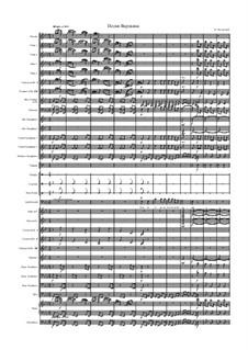 Песня Варлаама 'Как во городе было во Казани': Для голоса и оркестра by Модест Мусоргский