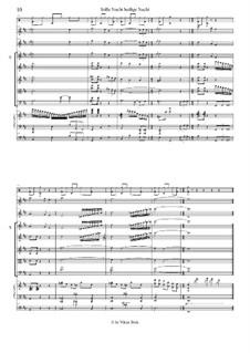Тихая ночь (ноты для скачивания): For large ensemble by Франц Ксавьер Грубер