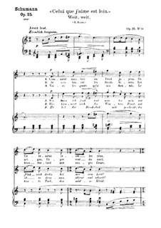 No.20 Вдаль, вдаль: Клавир с вокальной партией (немецкий и французский тексты) by Роберт Шуман