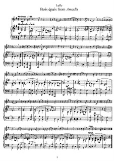 Амадис или Амадис Галльский, LWV 63: Bois épais. Version for flute and piano by Жан-Батист Люлли