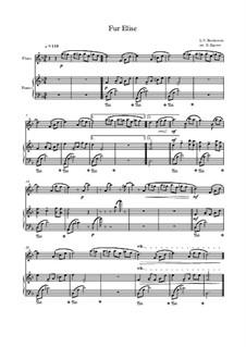 10 Easy Classical Pieces For Flute & Piano: Für Elise by Франц Шуберт, Иоганн Штраус (младший), Эдуард Элгар, Жак Оффенбах, Людвиг ван Бетховен, Эдвард Григ, Джулиус Бенедикт, Милдред  Хилл, Eduardo di Capua