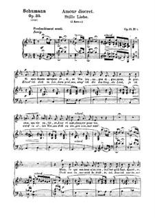 Двенадцать стихотворений для голоса и фортепиано, Op.35: No.8 Тихая любовь by Роберт Шуман