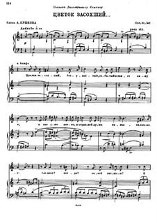 Пять романсов, Op.51: No.3 Цветок засохший by Николай Римский-Корсаков