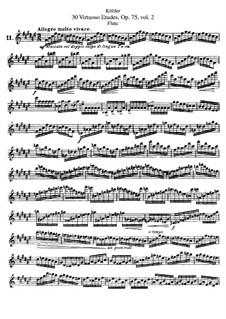 Тридцать виртуозных этюдов для флейты, Op.75: Книга II by Эрнест Кёлер