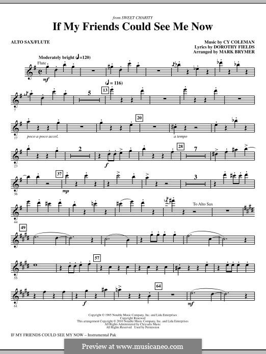 If My Friends Could See Me Now (from Sweet Charity): Alto Sax/Flute part by Cy Coleman
