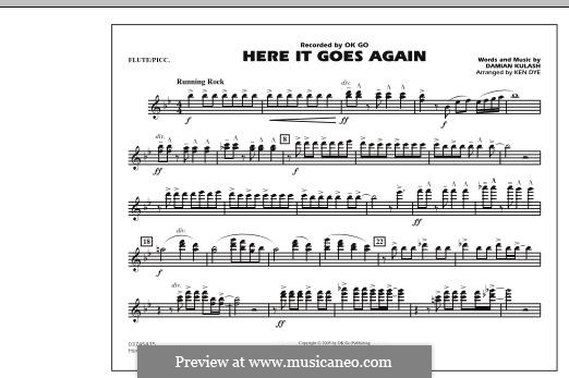 Here It Goes Again (OK Go): Flute/Piccolo part by Damian Kulash