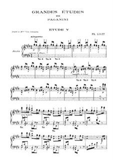 Большие этюды по Паганини, S.141: No.5 ми мажор by Франц Лист