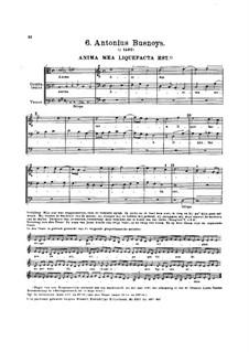 Anima mea liquefacta est: Anima mea liquefacta est by Antoine Busnois
