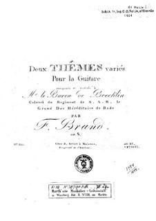 Две темы с вариациями, Op.8: Для гитары by Friedrich Brand