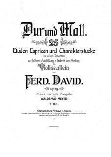 Двадцать пять этюдов, каприсов и характерных пьес для скрипки, Op.39: Книга II by Фердинанд Давид