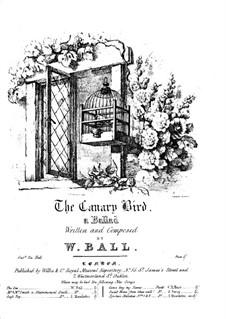 The Canary Bird: The Canary Bird by William Ball