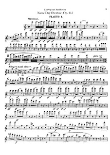 An Minna, WoO 115: Партии первой и второй флейт by Людвиг ван Бетховен
