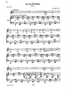 No.2 Фиалка: Для голоса и фортепиано by Иоганнес Брамс