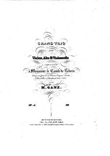 Большое трио для струнных ре мажор, Op.8: Партия скрипки by Moritz Ganz