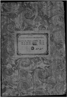 Большой магнификат No.22: Большой магнификат No.22 by Bernard Aymable Dupuy