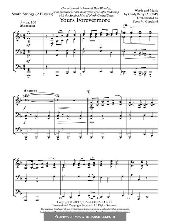Yours Forevermore: Keyboard String Reduction part by Cindy Berry