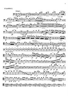 Леонора. Увертюра No.2 до мажор, Op.72a: Партии I-II фаготов by Людвиг ван Бетховен