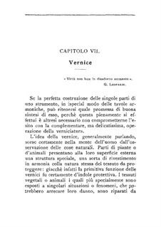 Il liutaio: Chapters VII-VIII by Domenico Angeloni
