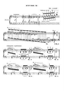 Большие этюды по Паганини, S.141: No.2 ми-бемоль мажор (с аппликатурой) by Франц Лист