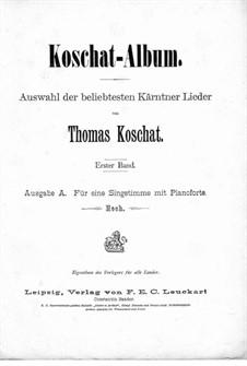 Kärntner Lieder: Band I, für Stimme und Klavier by Томас Кошат