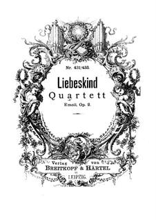 Струнный квартет ми минор, Op.2: Струнный квартет ми минор by Josef Liebeskind