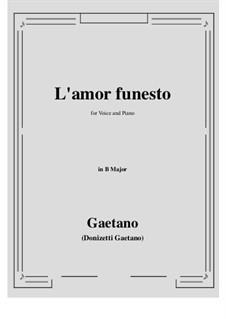 L'amor funesto. Romance: B Major by Гаэтано Доницетти