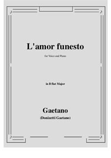 L'amor funesto. Romance: B flat Major by Гаэтано Доницетти