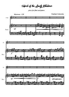 Марш одинокого странника: Для флейты и фортепиано by Владимир Солонский