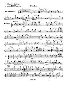 Жизнь артиста, Op.316: Партия флейты by Иоганн Штраус (младший)