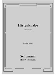 Hirtenknabe: B flat minor by Роберт Шуман