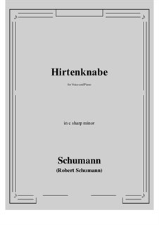 Hirtenknabe: C sharp minor by Роберт Шуман