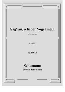 Песни и романсы, Op.27: No.1 Sag' an, о lieber Vogel mein (Tell Us, My Dear Bird) A Major by Роберт Шуман