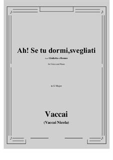 Джульетта и Ромео: Ah! Se tu dormi, svegliati (G Major) by Никола Ваккаи