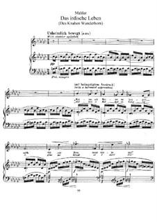 Волшебный рог мальчика: Земная жизнь, для голоса и фортепиано by Густав Малер