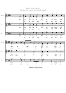 Winterreise, Nr.73-100, Op.23: Nr.88 De spookzonnen by Werner Schneider-Wiegand